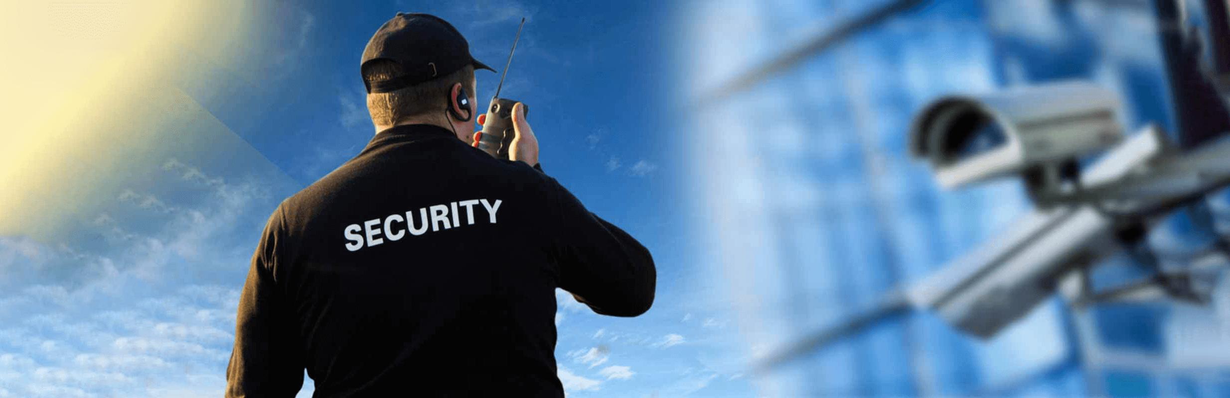 Профессиональная охрана