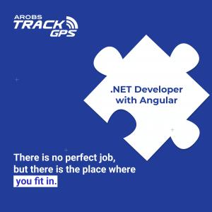 .NET Developer with Angular